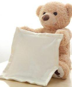 Peek-a-Boo Teddy Bear