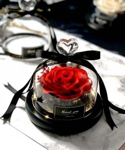 Exclusive Real Preserved Rose in Glass Dome with Lights Rose Valentines Day Gift