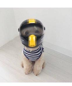 Feline Helmet