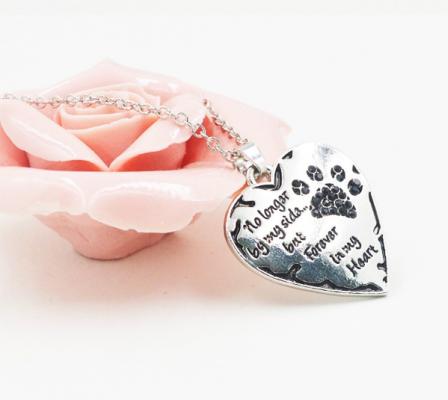 dog ashes necklace-pet urn necklace