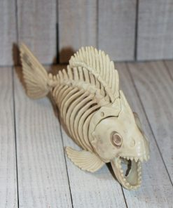 halloween Skeleton Fish